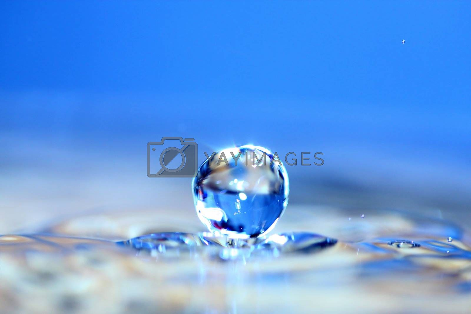 Water drop. Soft colors. Close-up.
