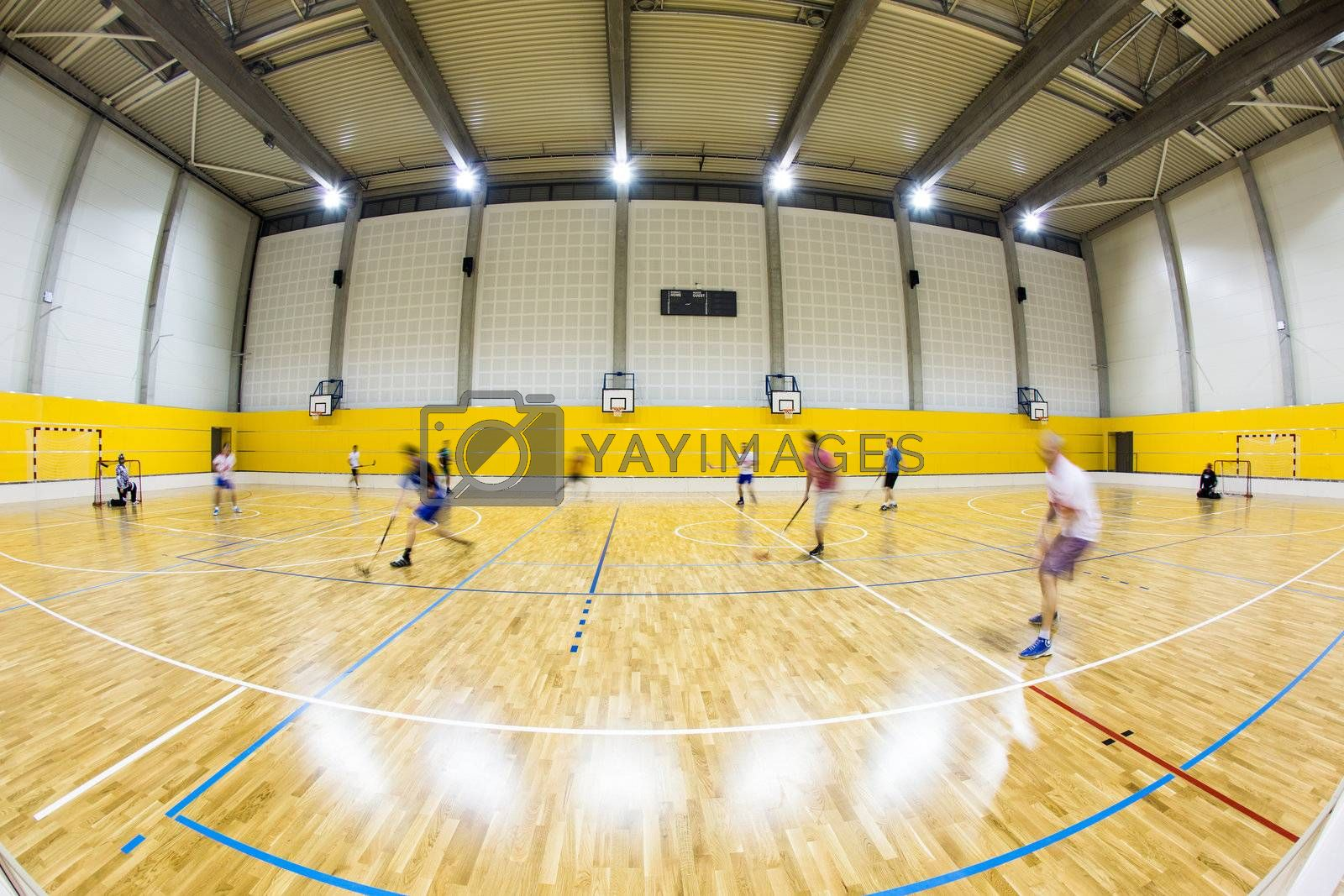 interior of a modern multifunctional gymnasium with young people