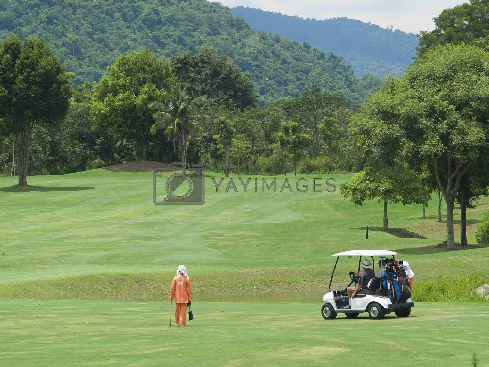 Caddie and golf cart on the fairway by epixx