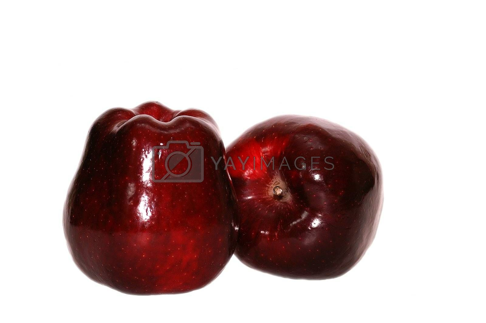 Two red apples by helgy