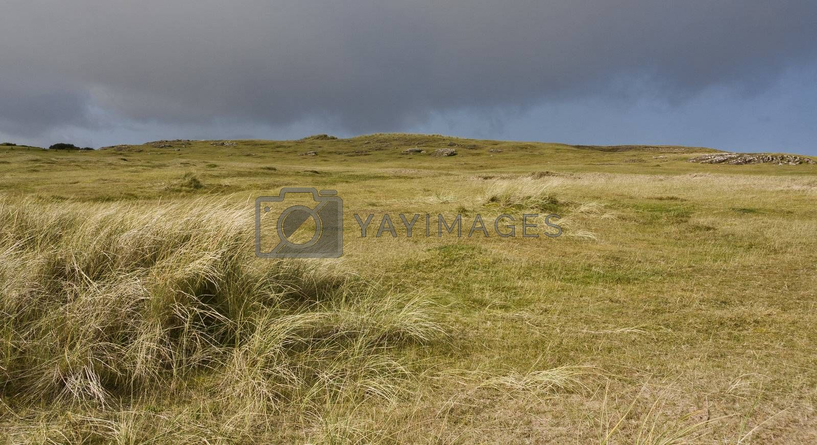 dunes in north scotland with grass and hills in the background