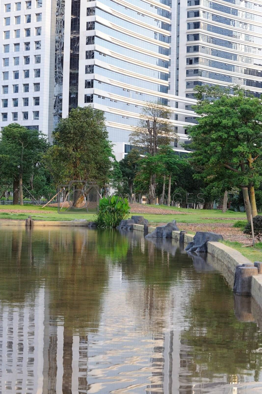 Urban garden with pond, tree and building background