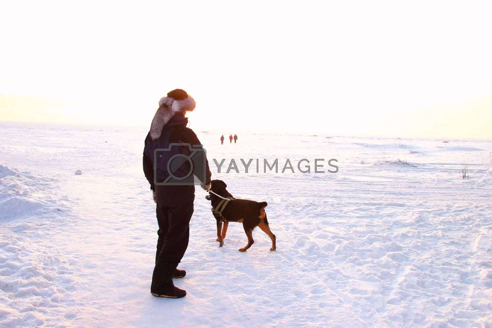 Men with rottweiler. Winter view to the beach. Beautiful sunset