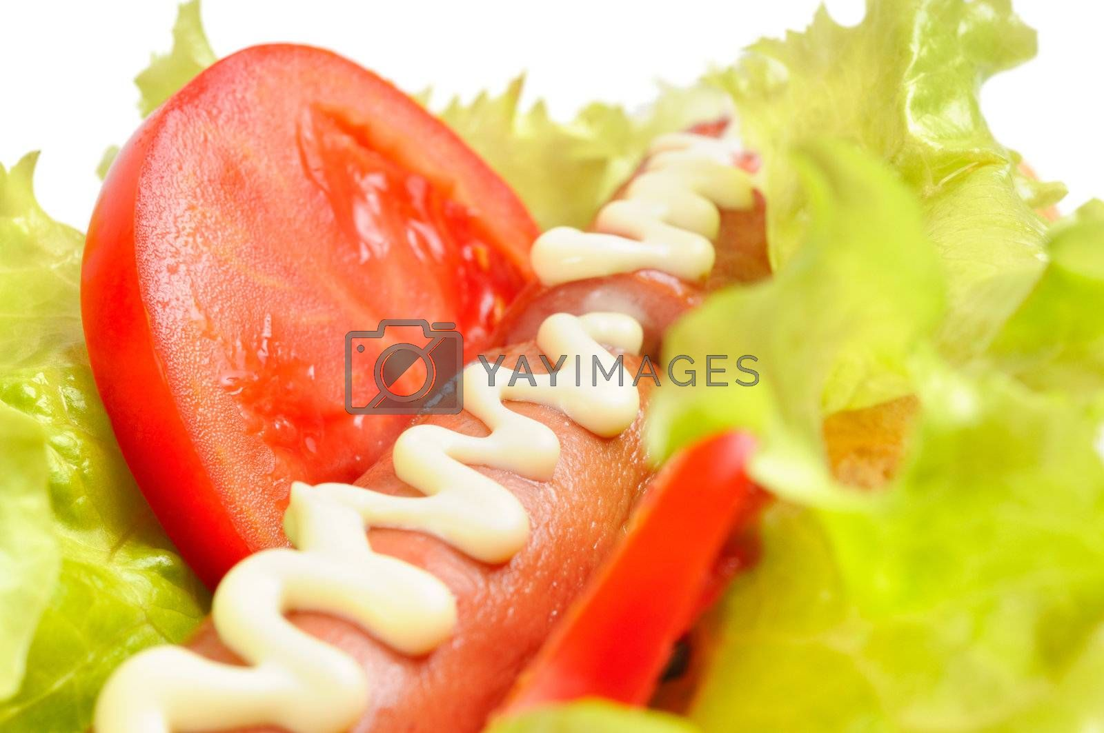 Tasty and delicious hotdog. Isolated on white.