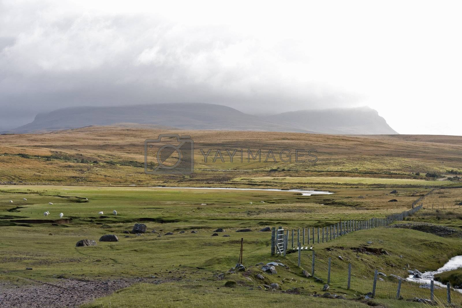 scottish landscape with mountains in background and grass in front