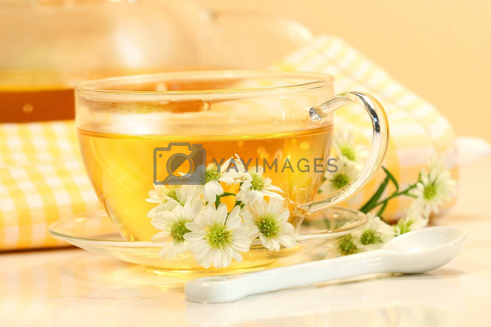 Glass tea cup with herbal tea and flowers