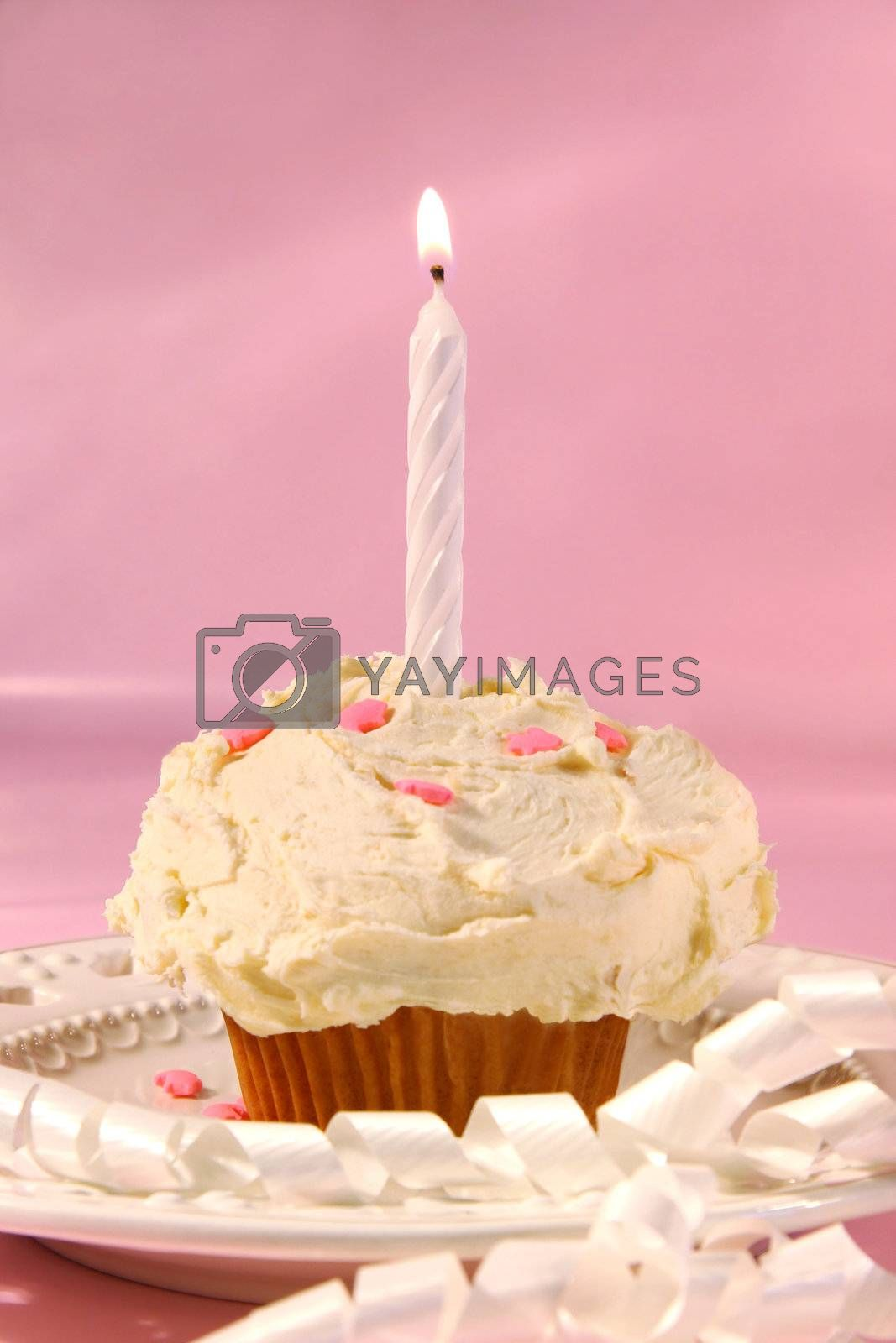 Little cupcake with candle on pink background