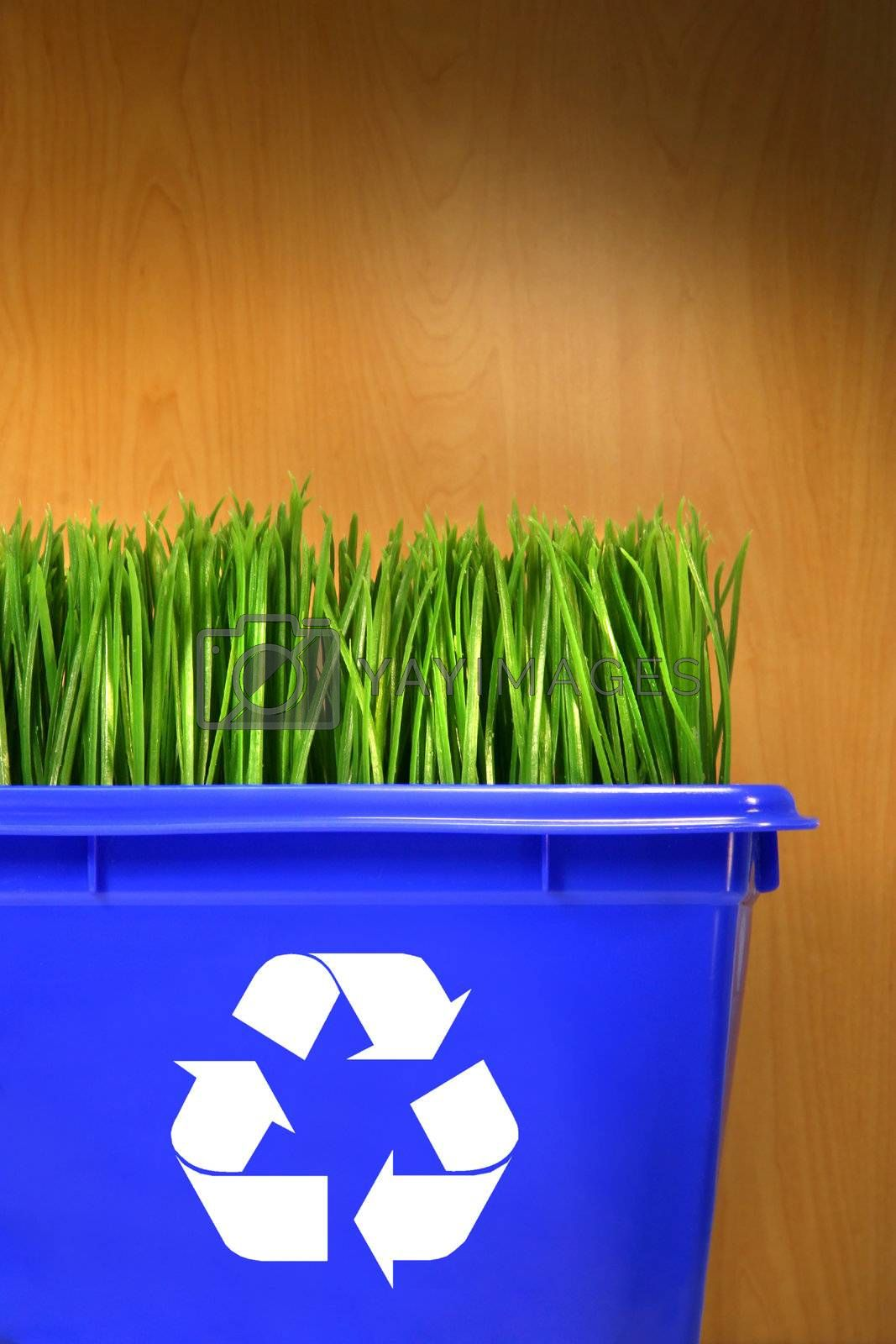 Blue recycle bin with grass inside against wood background