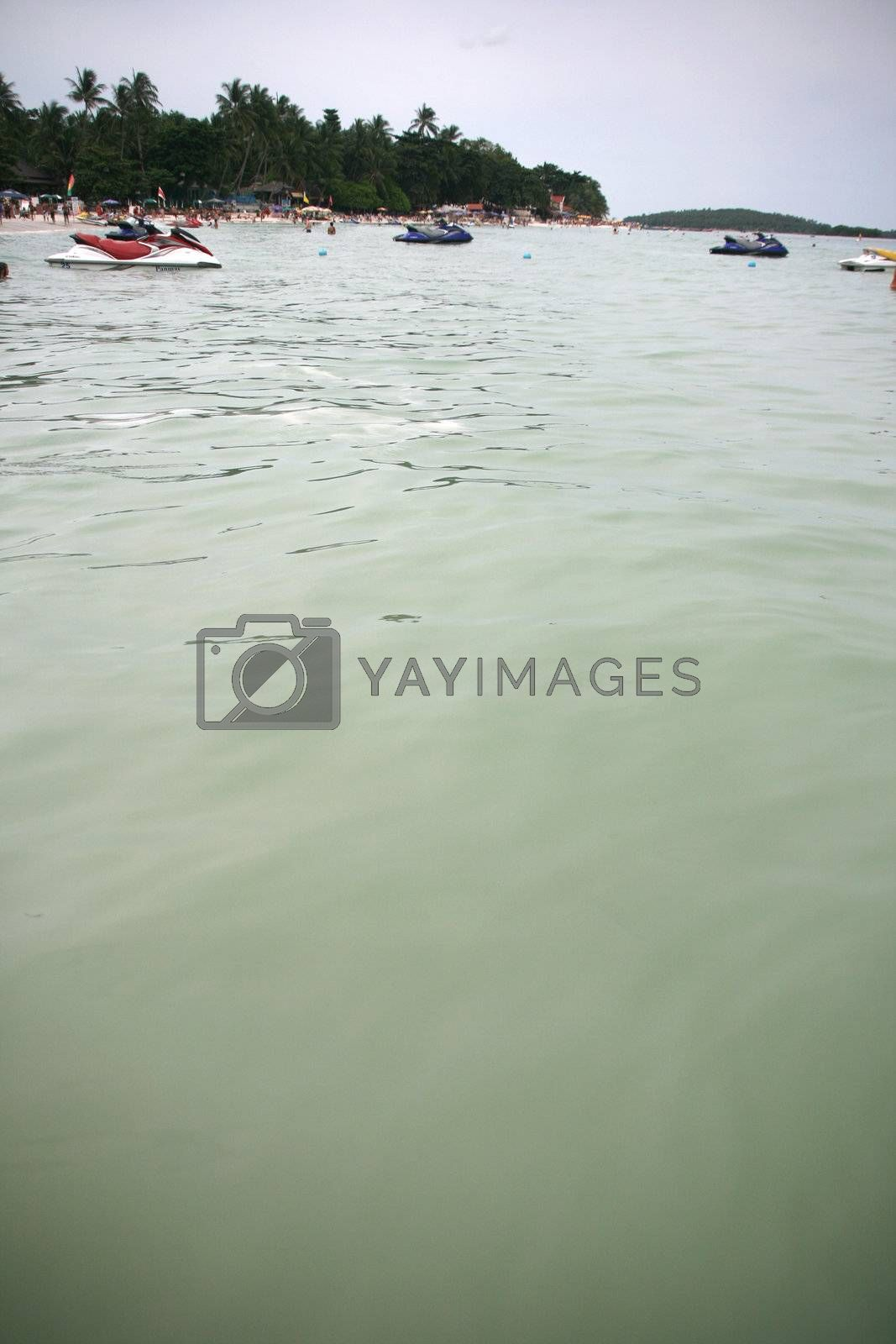 Royalty free image of green sea by forwardcom
