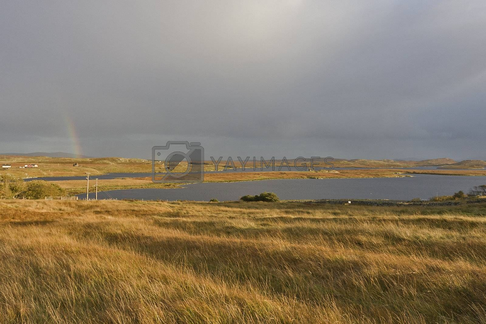 soft evening scene in scottish highlands with grass in front of lake