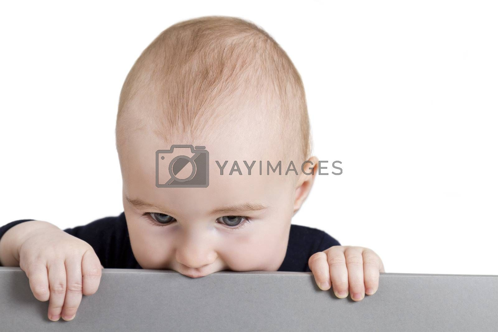young child holding horizontal, grey sign. isolate on white background