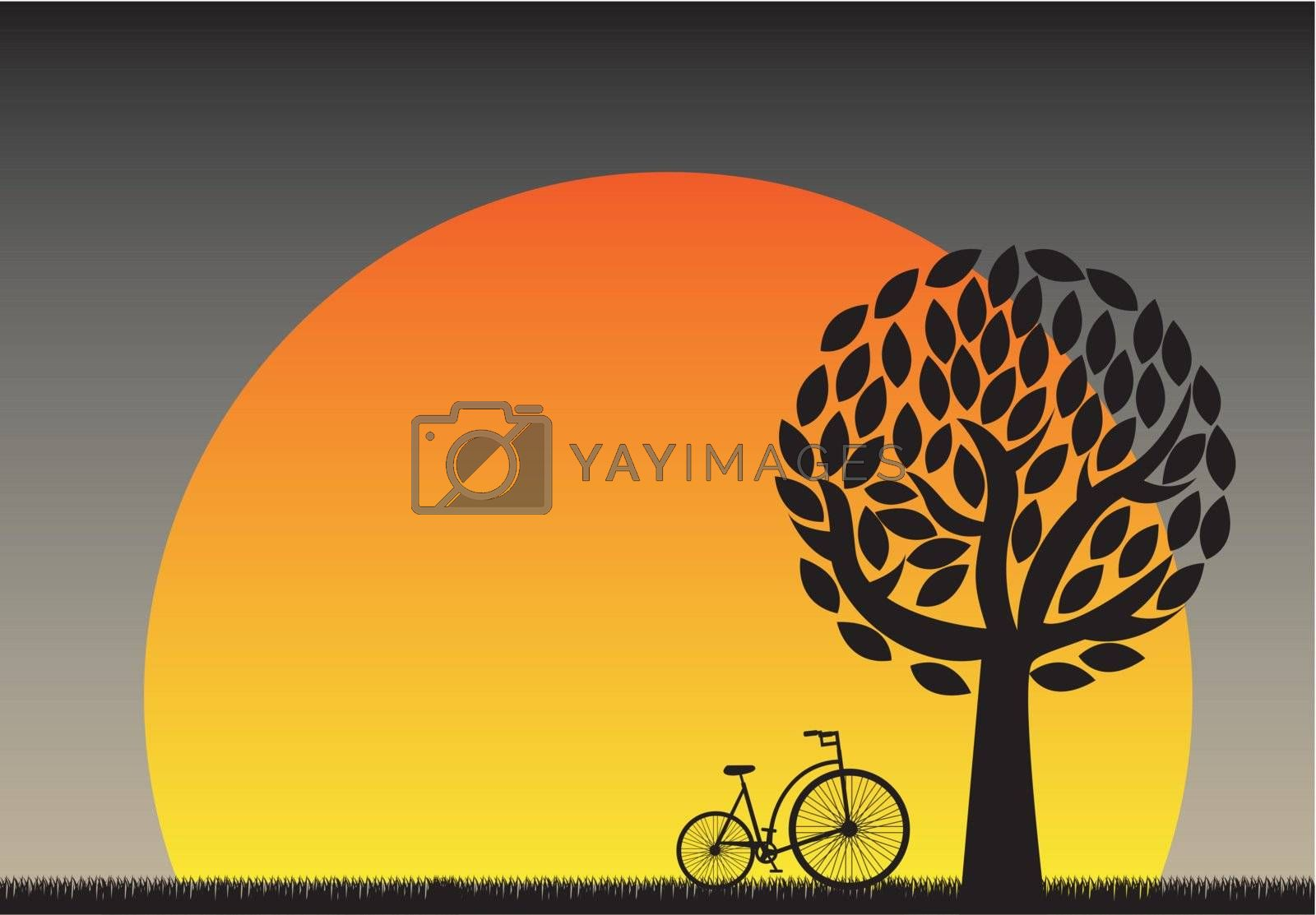 beautiful sunset in the field with a bicycle