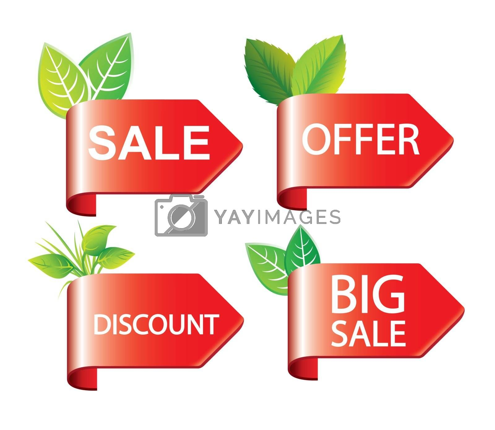 labels offer, discounts and sales with decorative leaves