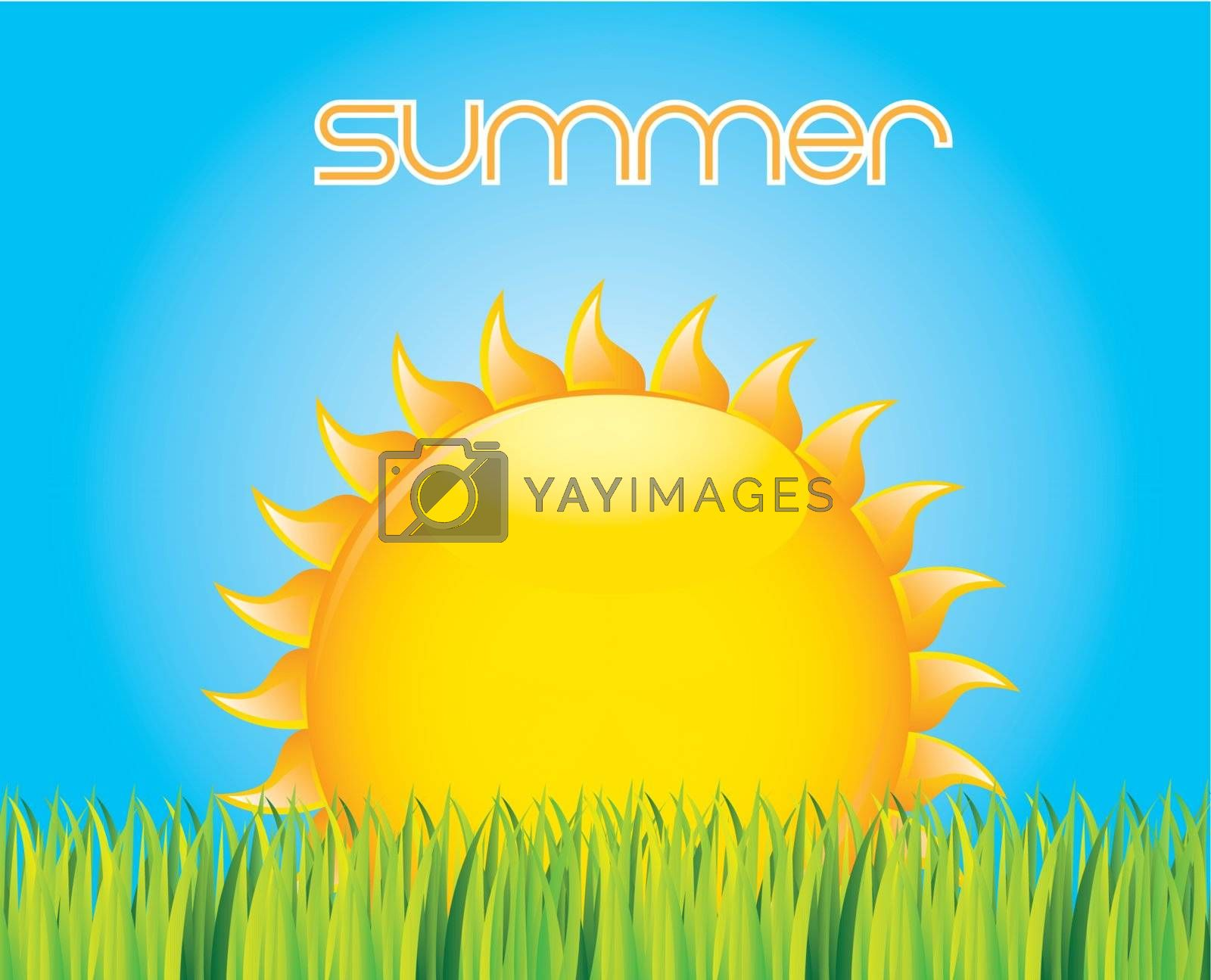beautiful sunset indicating that summer vector illustration