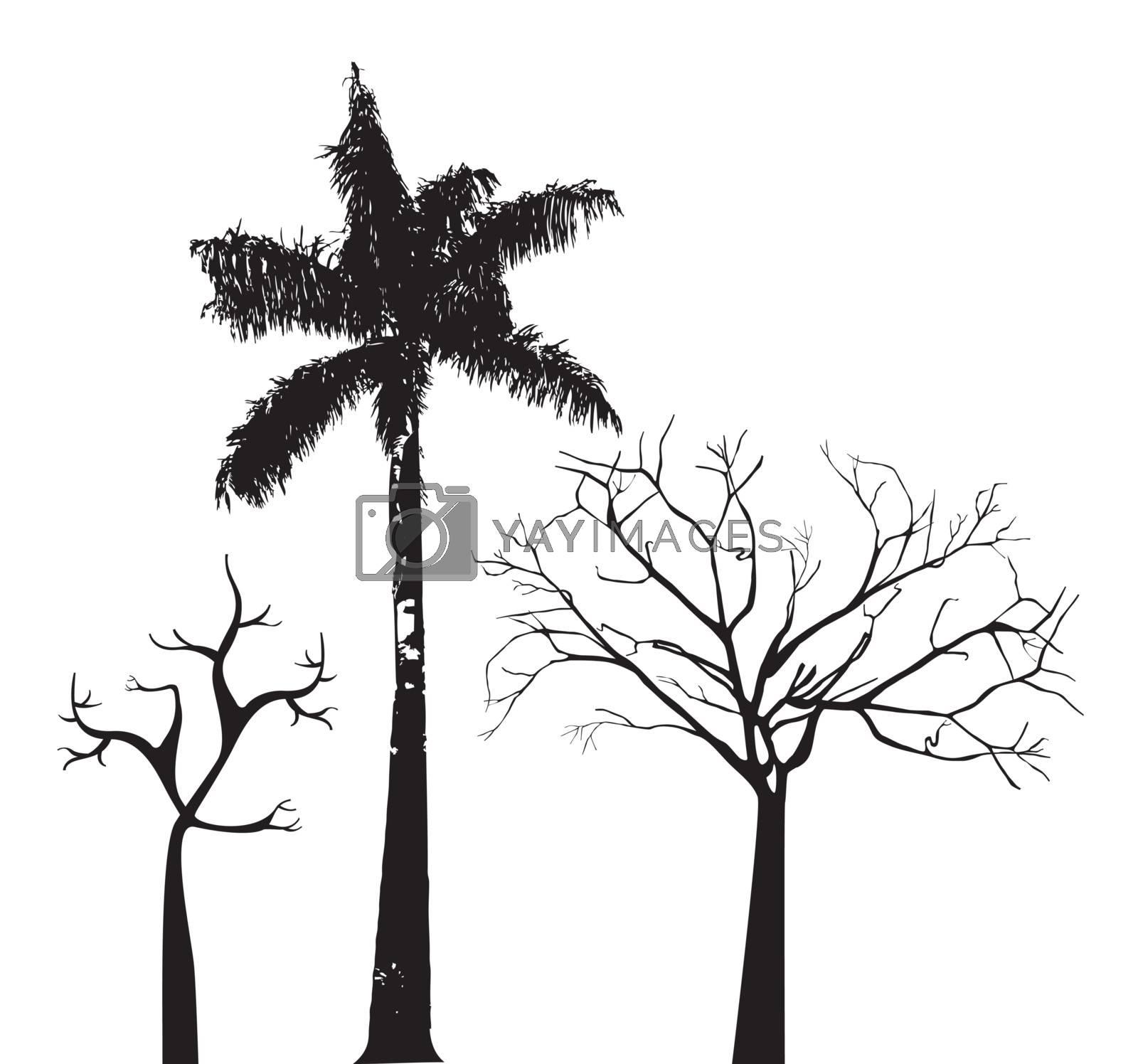 Tree over white background vector illustration. Natural background