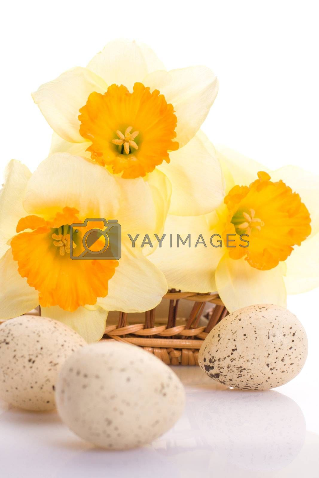 Decorated speckled easter eggs with a bunch of daffodils