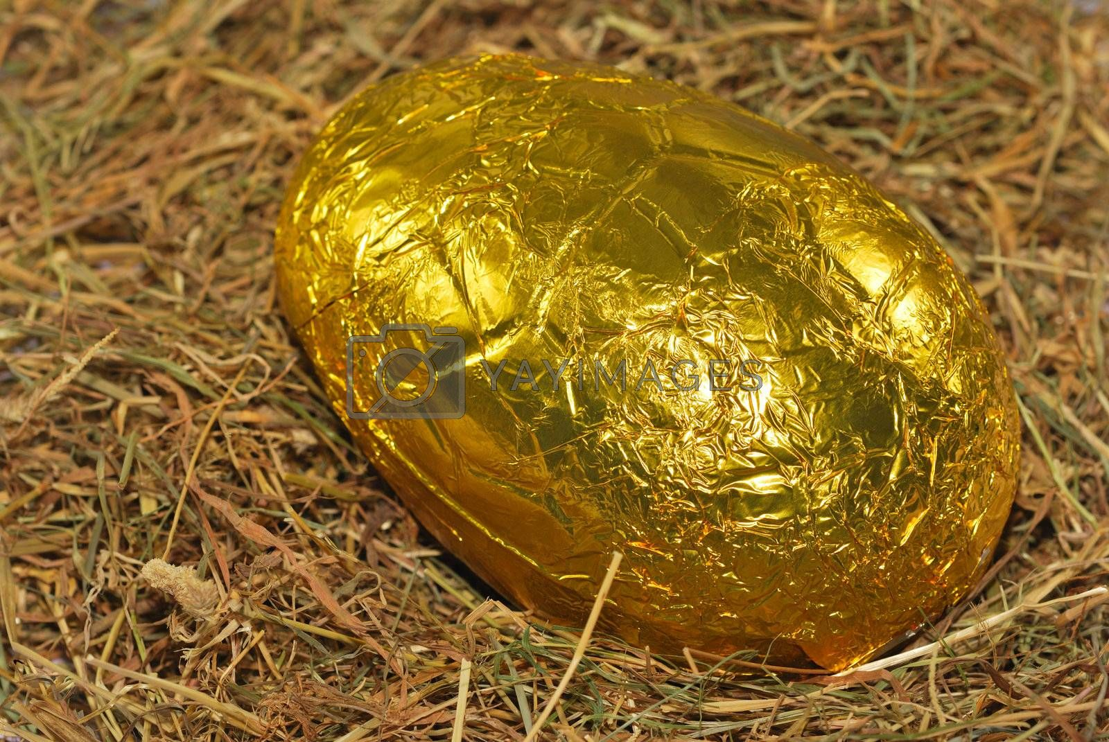 Easter egg on bed of straw