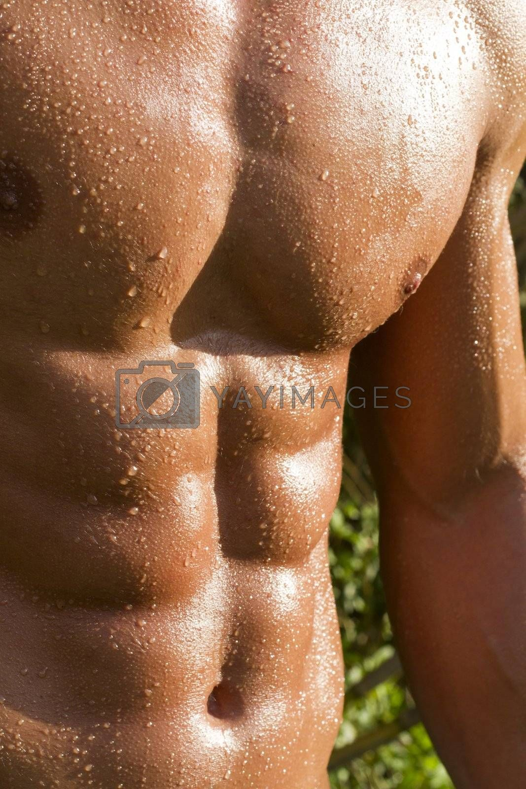 View of a very fit male model with muscles on the countryside.