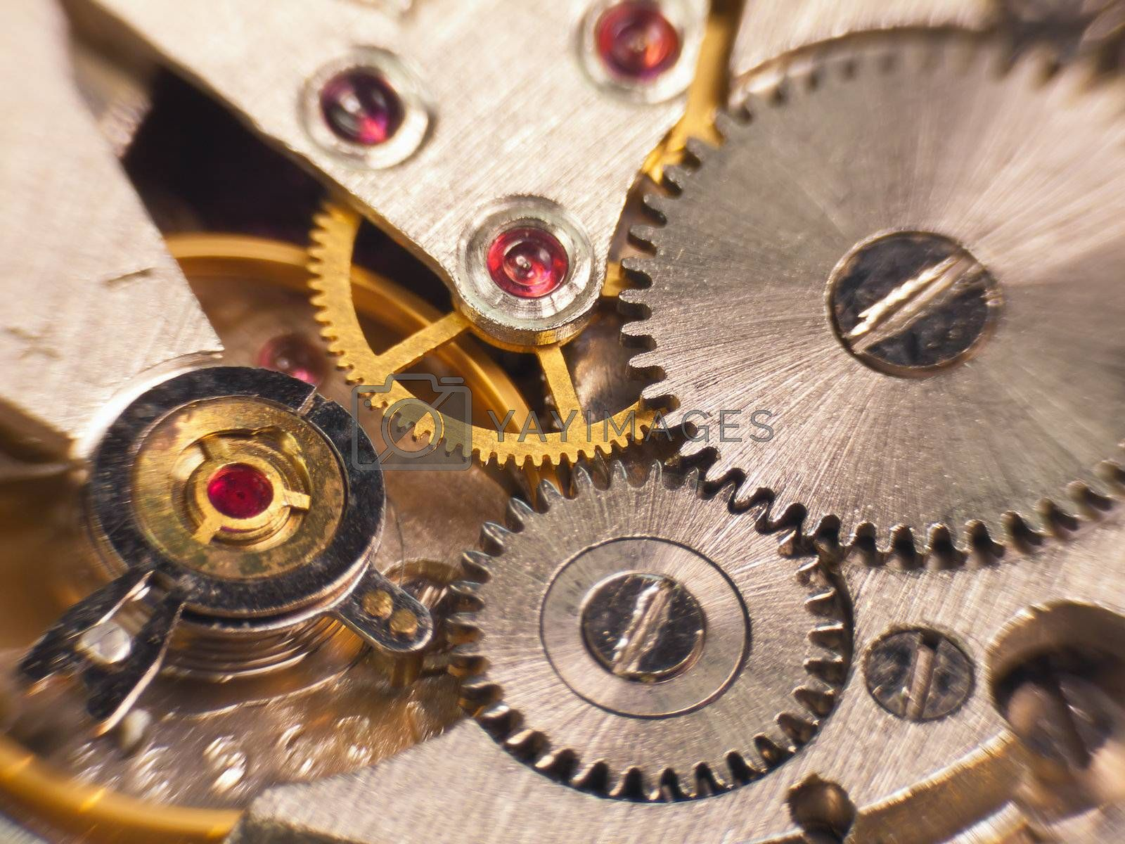 Macro photo of the mechanism of a watch soft focus