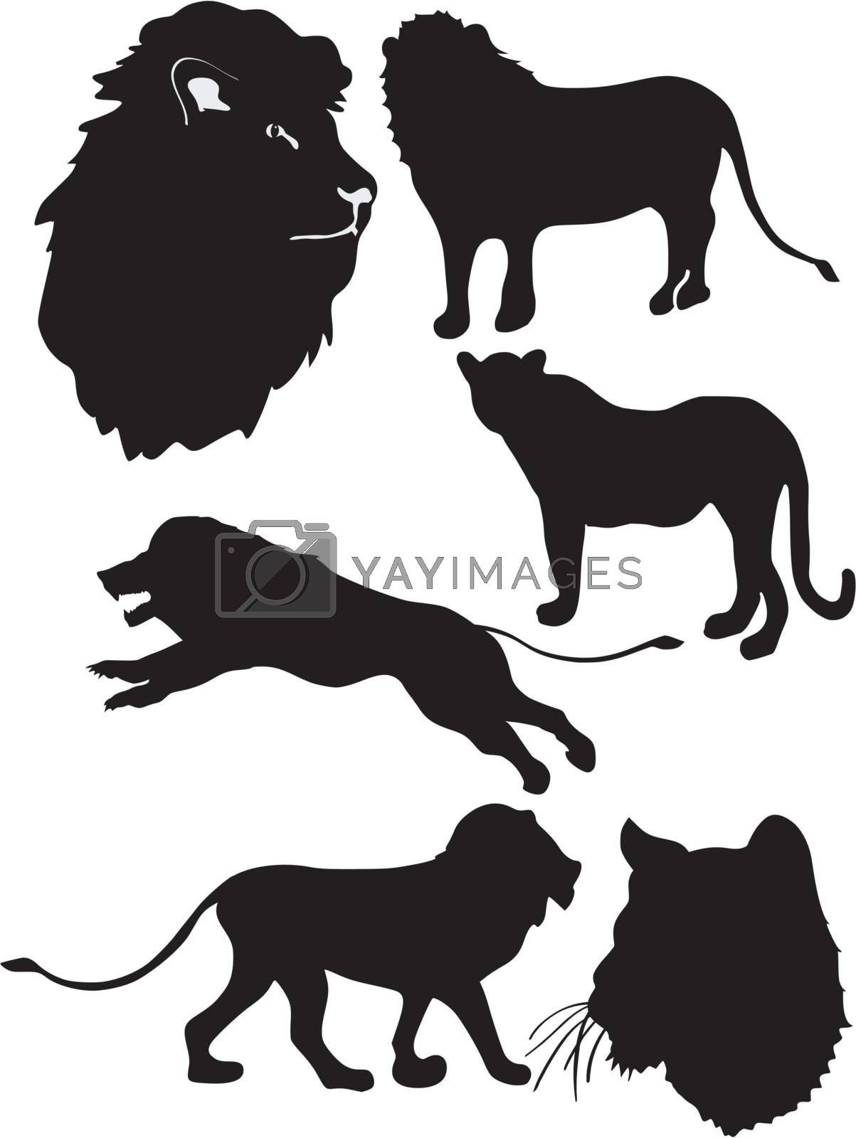 set of the silhouettes of the lion