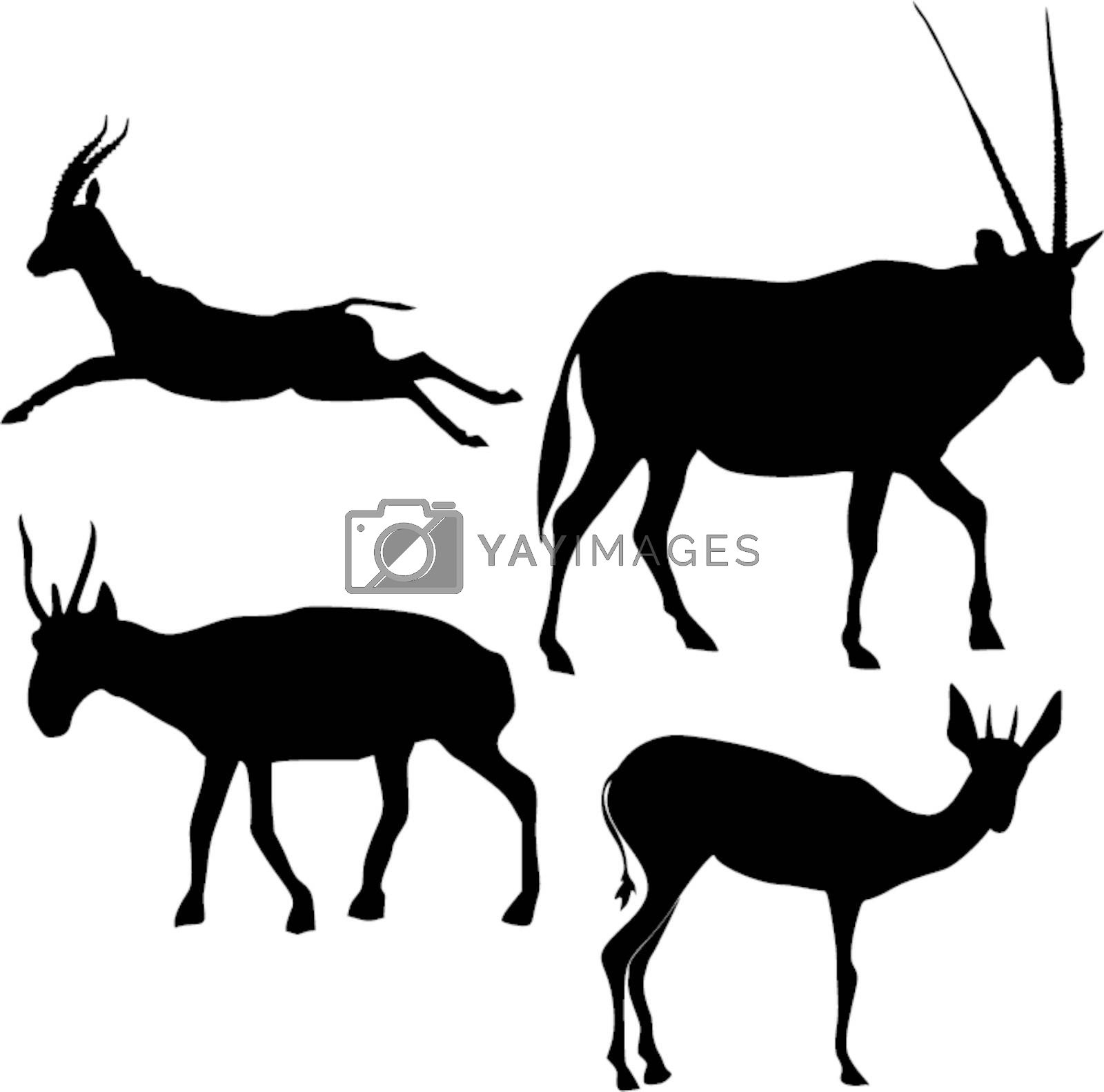 set of the silhouettes of the gazelle