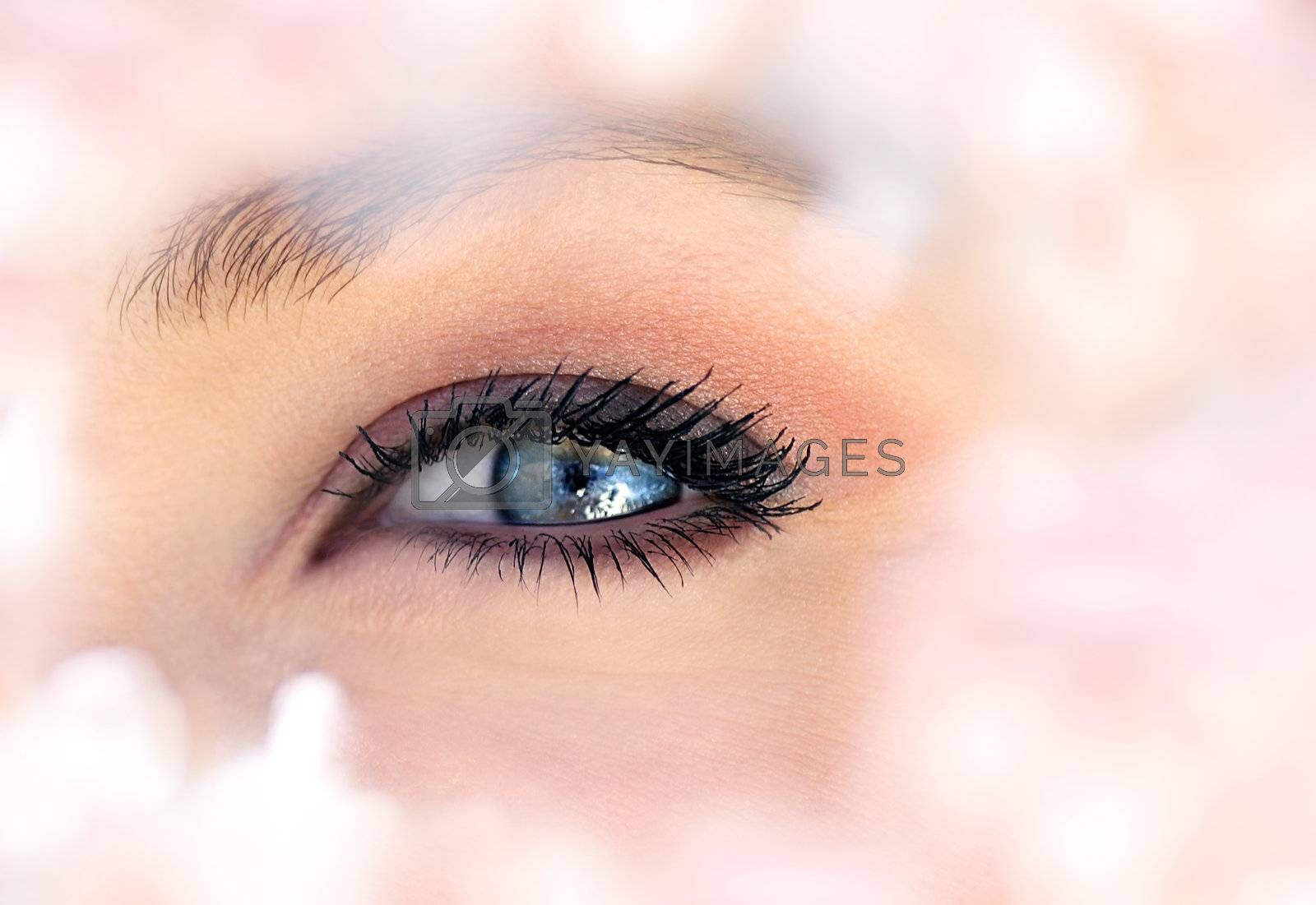 Beautiful abstract blue eye surrounded with fresh flowers