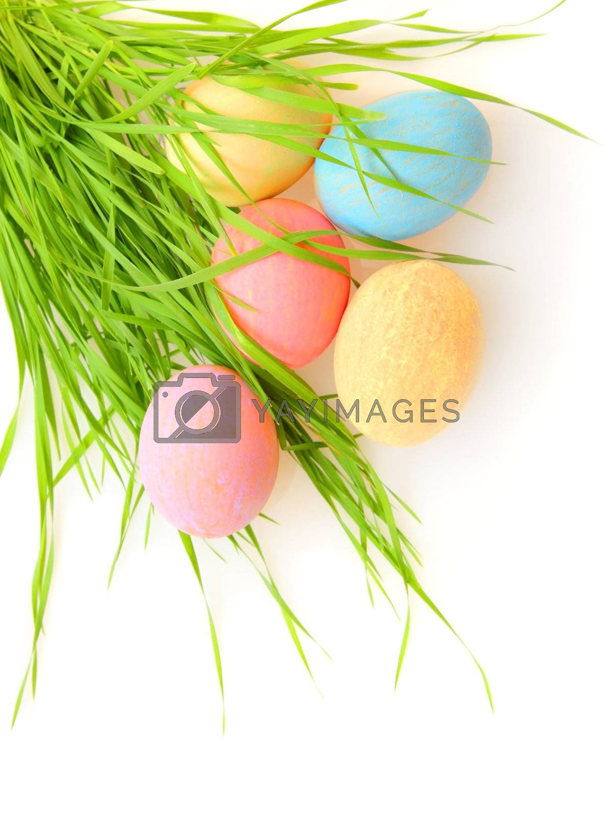 Easter eggs with grass isolated on white background