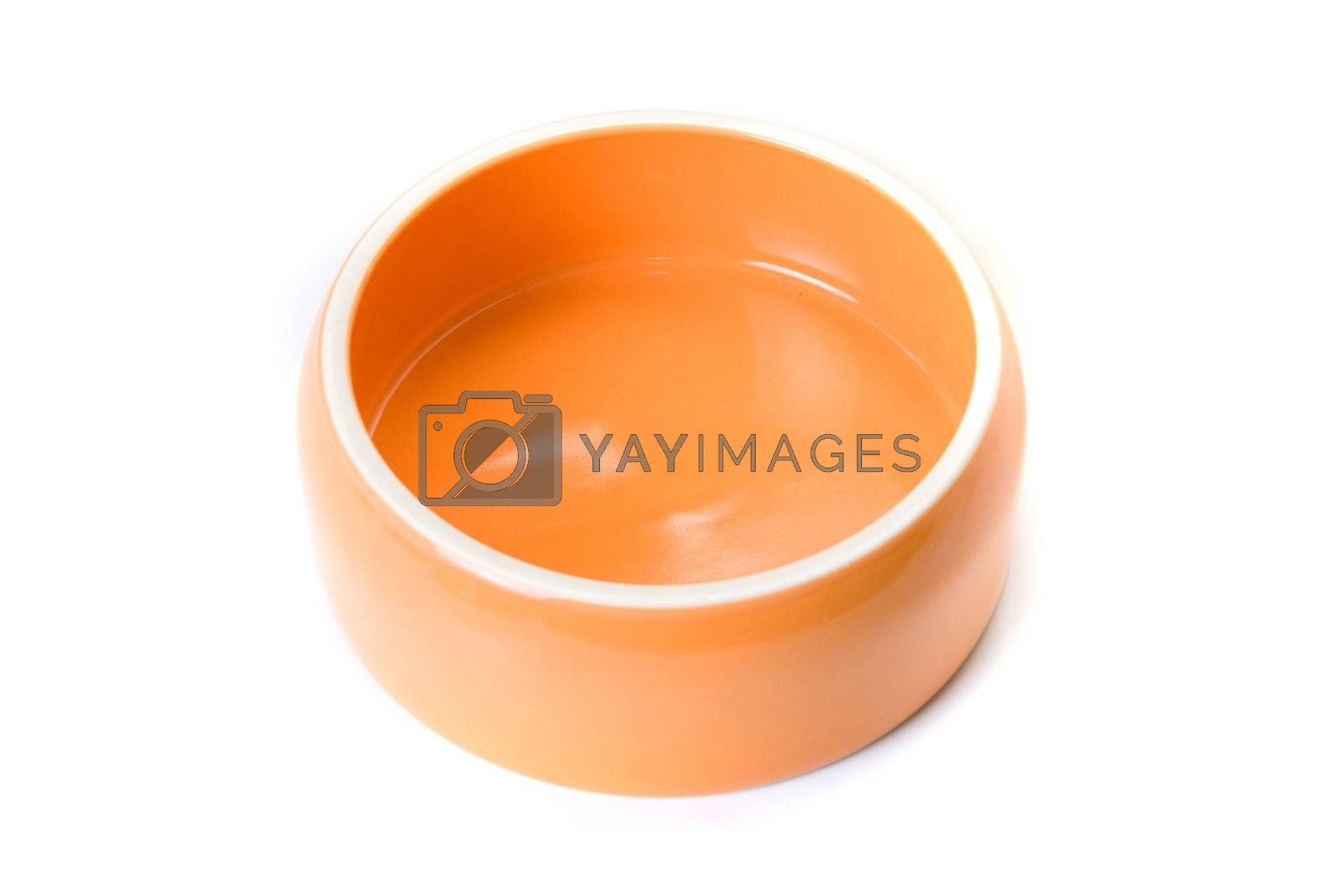 Bowl for pets isolated on a white background