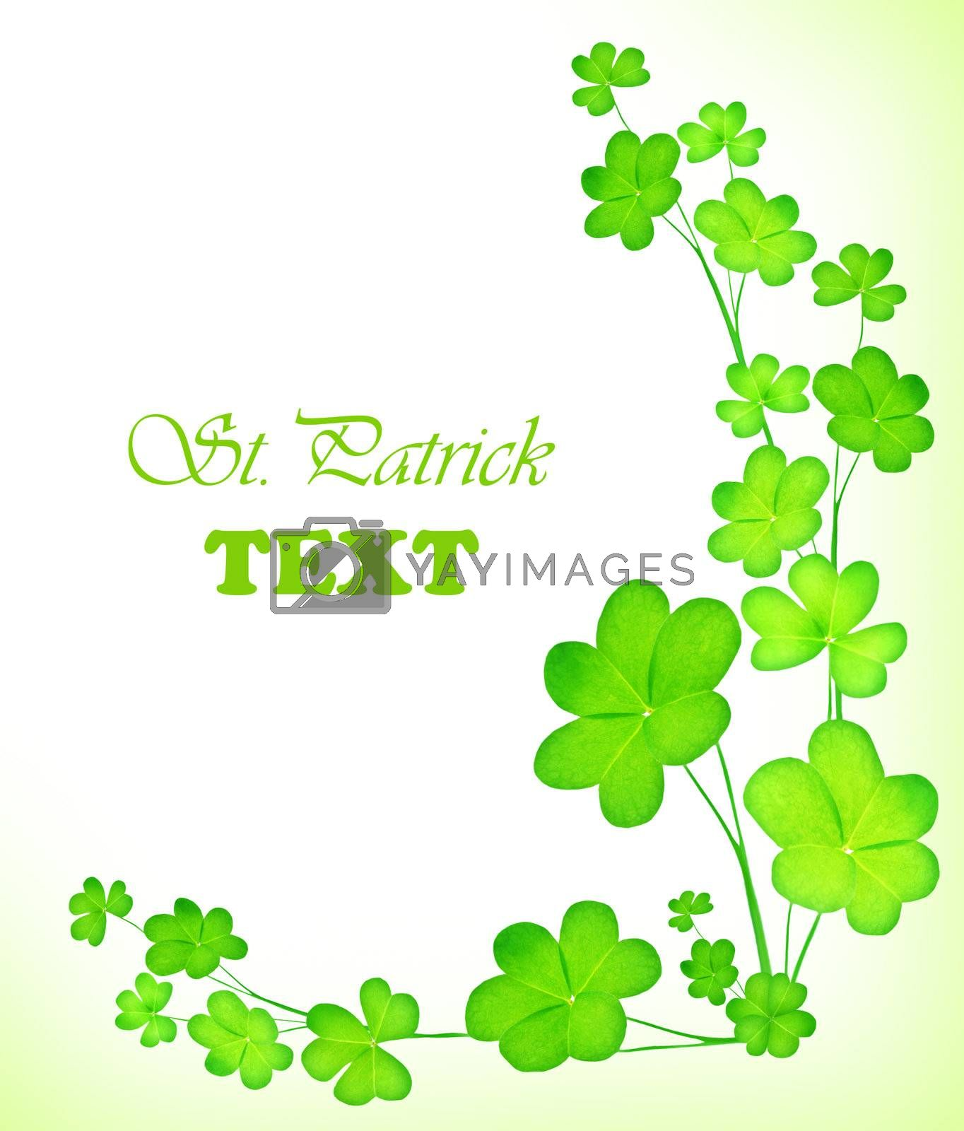 Green clover holiday border, st.Patrick's day decoration isolated on white background with text space