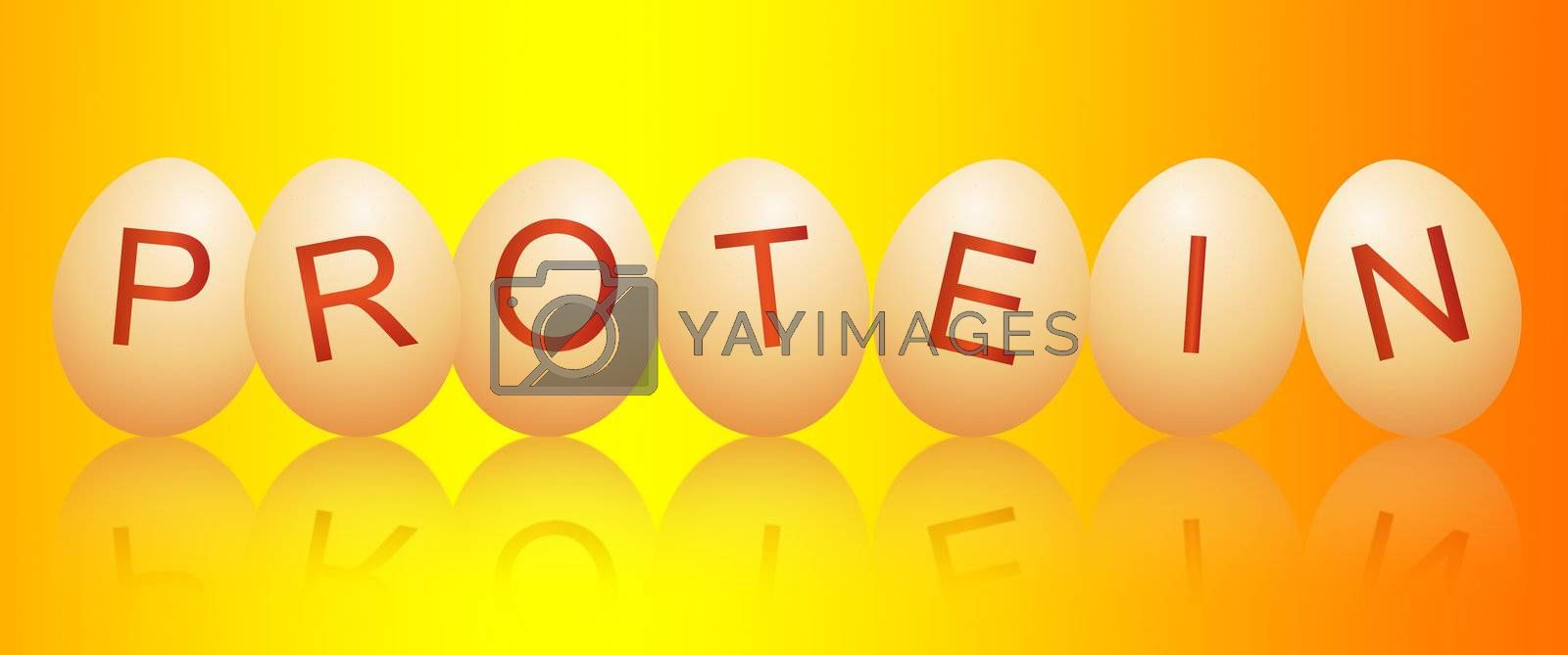 Illustration depicting a row of chicken eggs with letters spelling the word PROTEIN arranged over vivid yellow and orange and reflecting into the foreground.