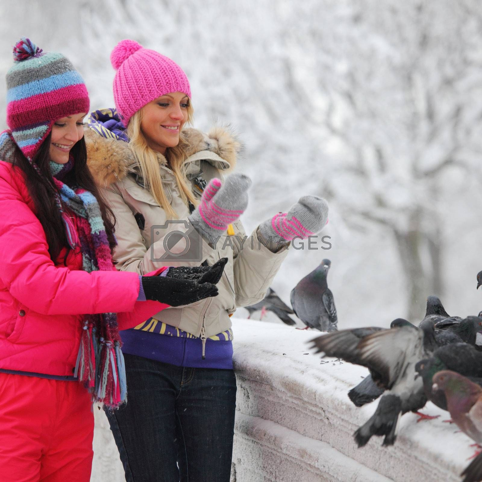 winter women give food to the pigeon
