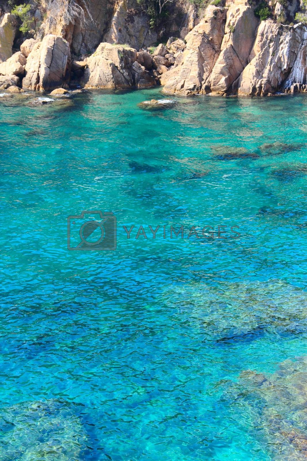 Lagoon with blue water and rocks top view