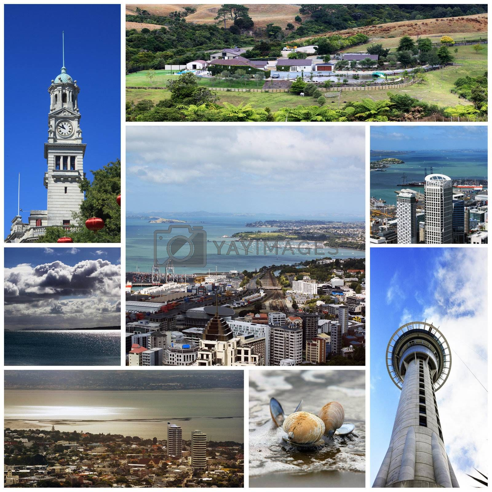 Collage from 8 photos city Auckland. New Zealand