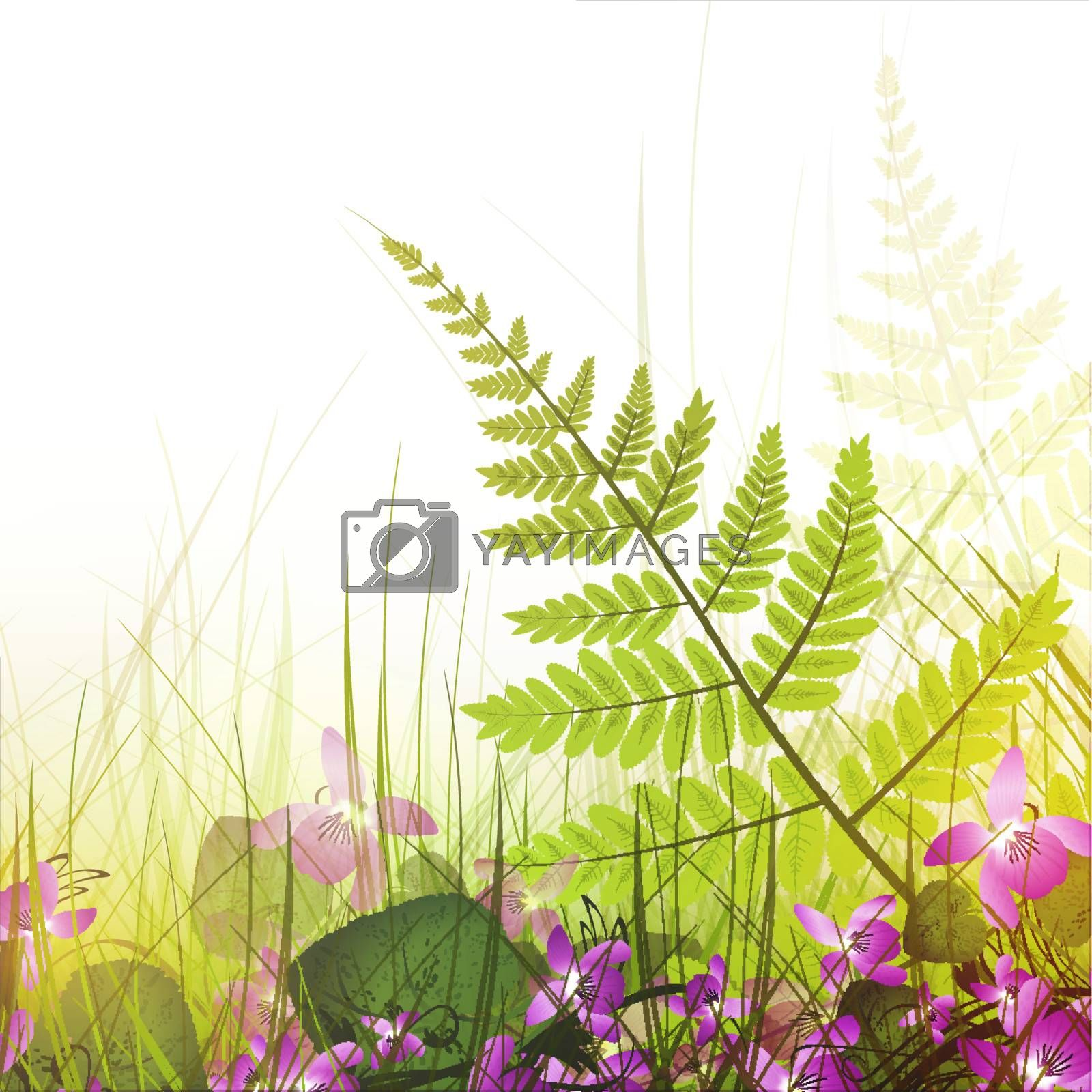 summer meadow with viola flowers over white background