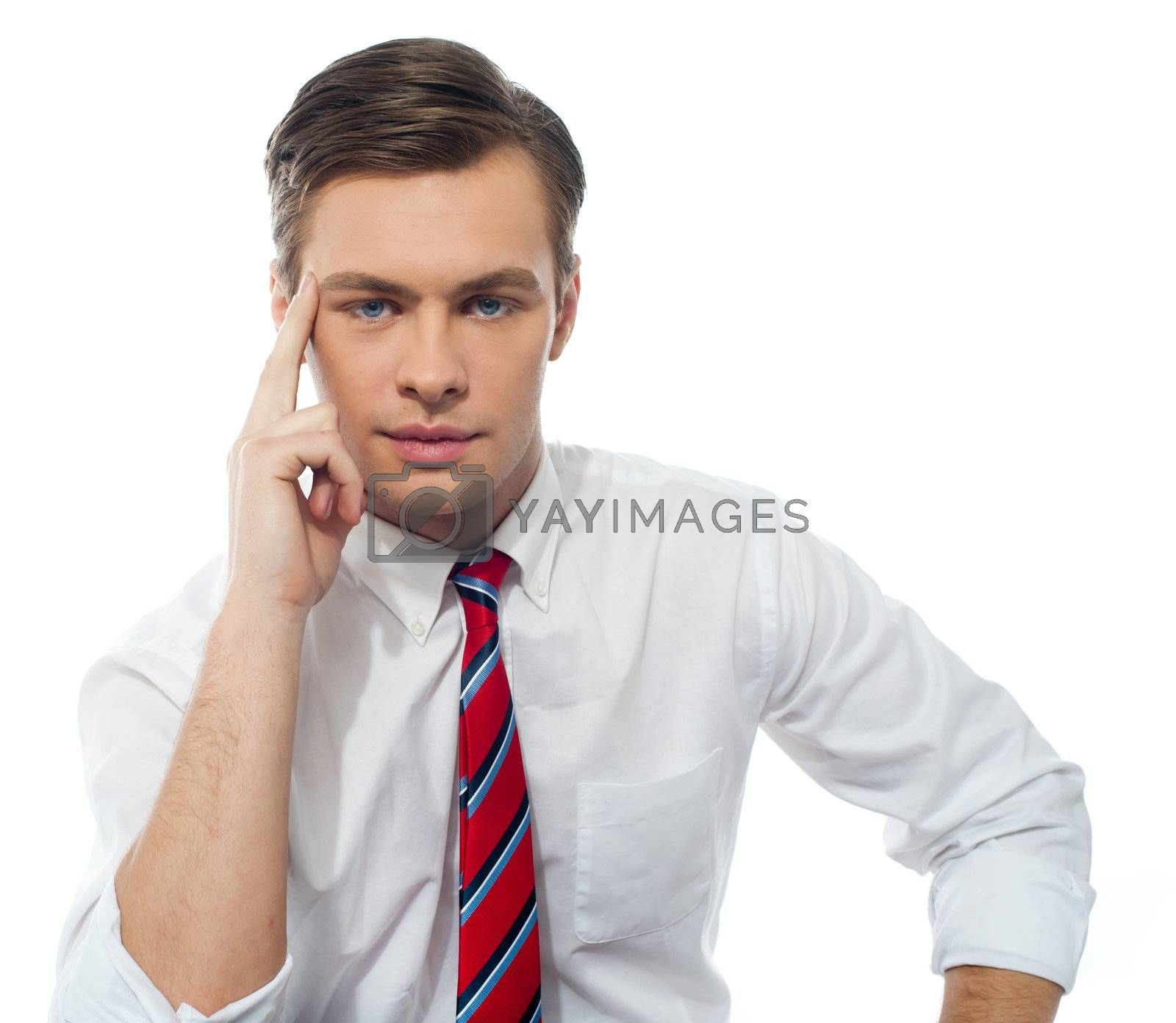 Stylish portrait of a handsome business executive isolated over white background
