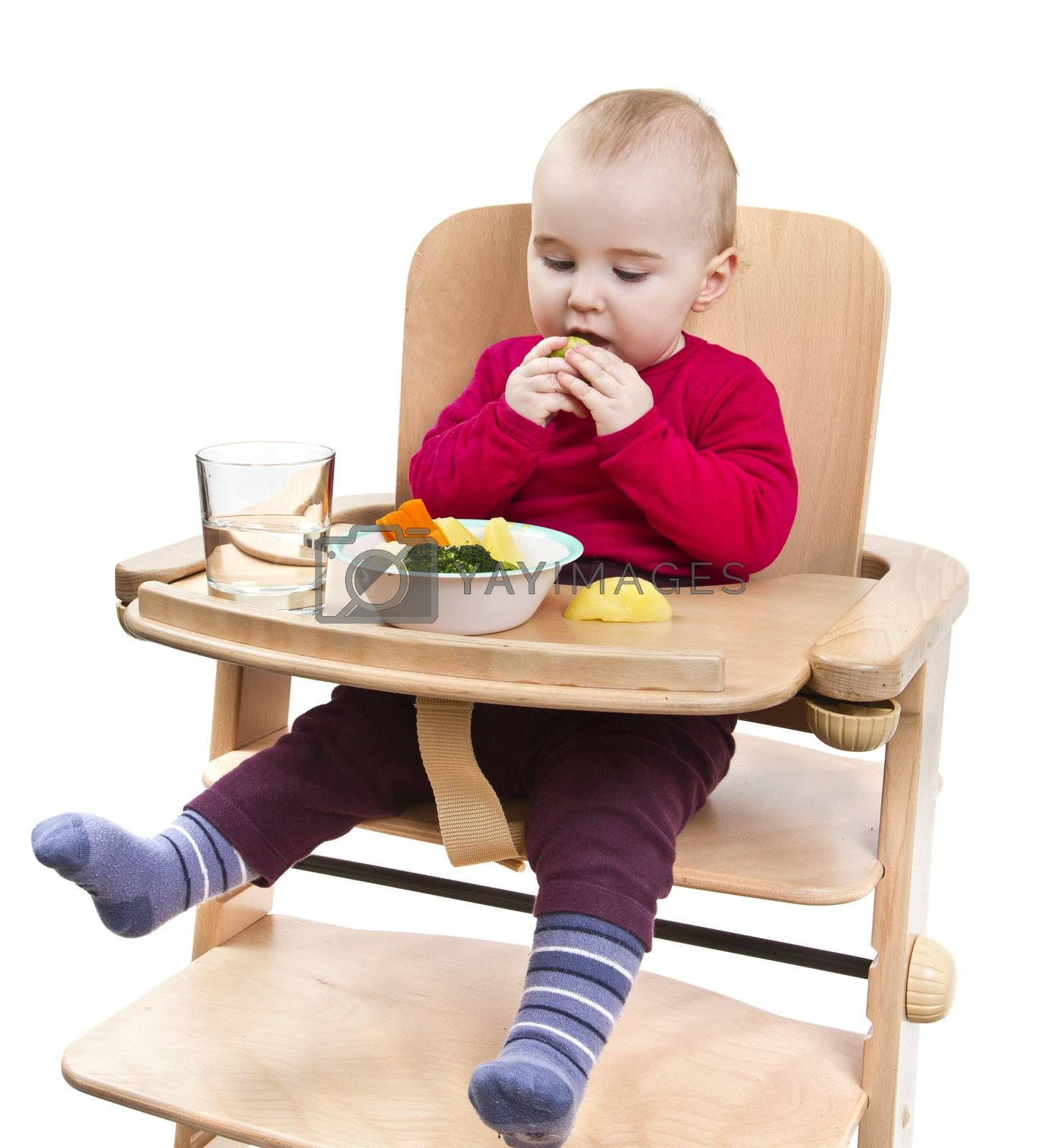 young child in red shirt eating vegetables in wooden chair. Isolated on white background