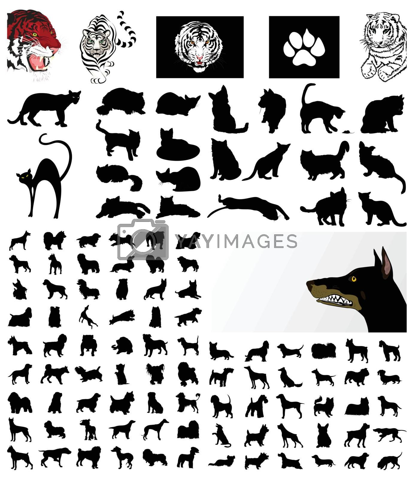 Collection of silhouettes of cats and dogs. A vector illustration
