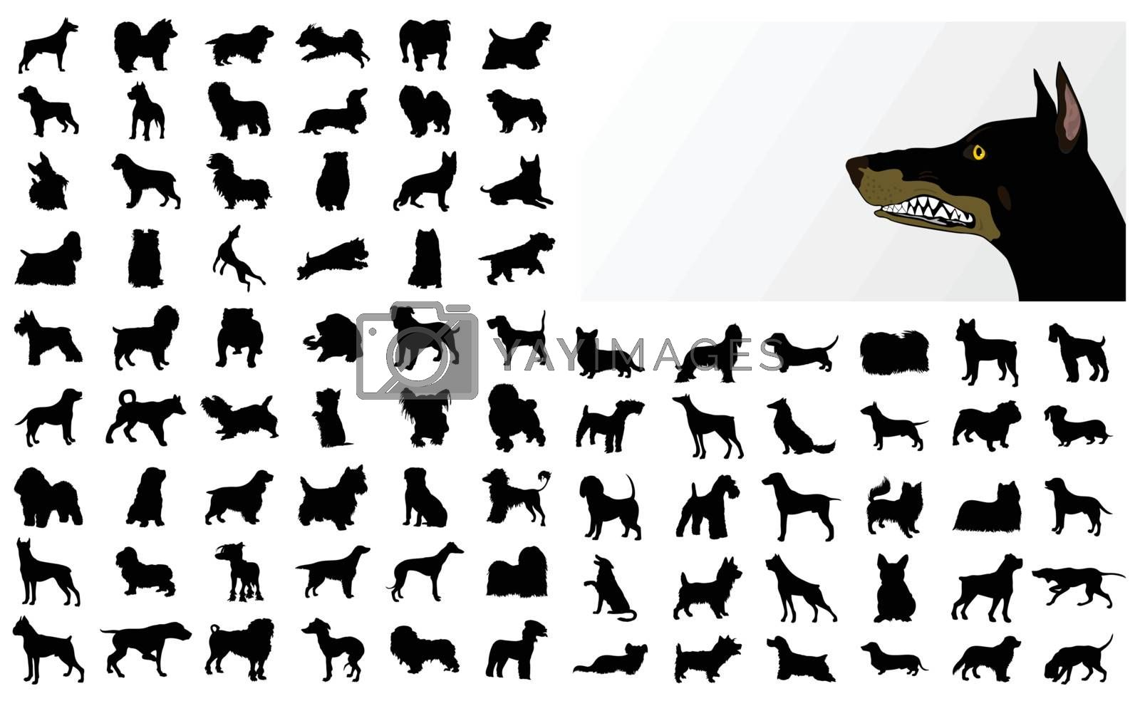 Black silhouettes of different breeds of dog. A vector illustration