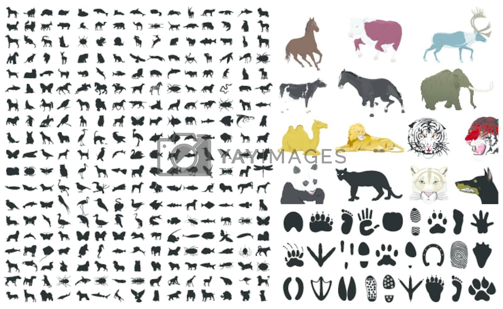The big collection of animals. A vector illustration