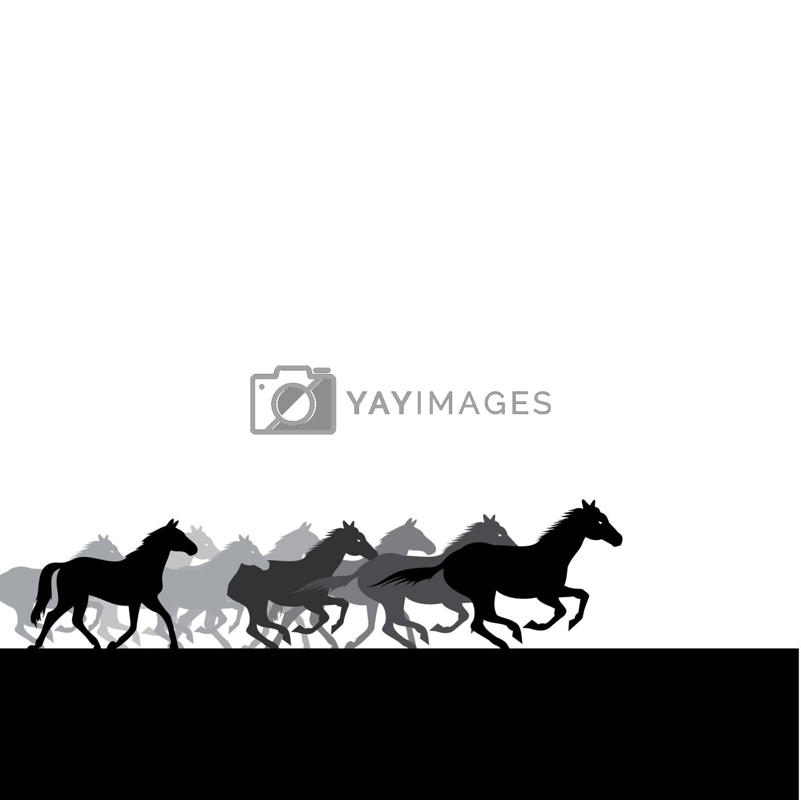 Run of herd of horses across the field. A vector illustration