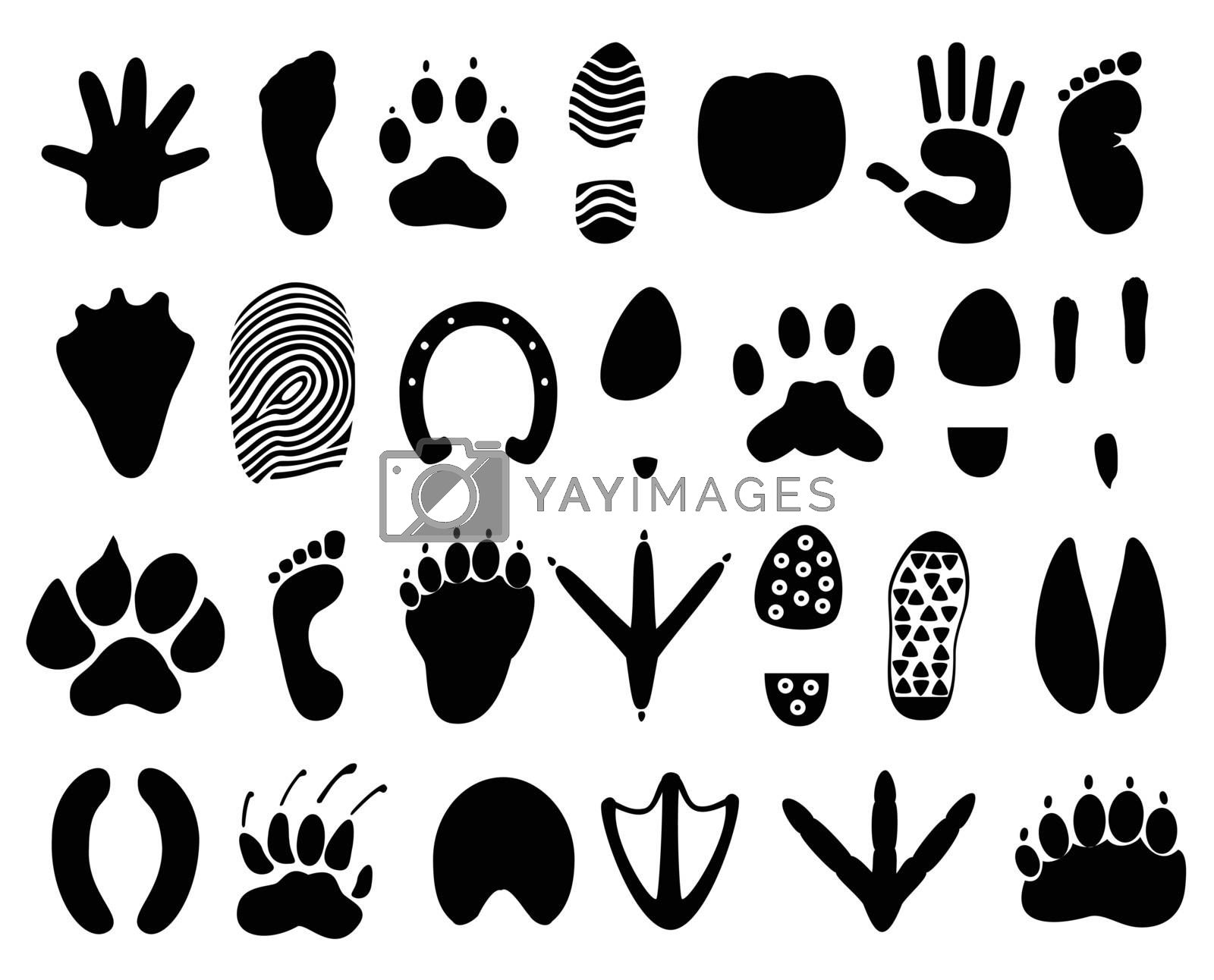 Traces of the person and animals. A vector illustration
