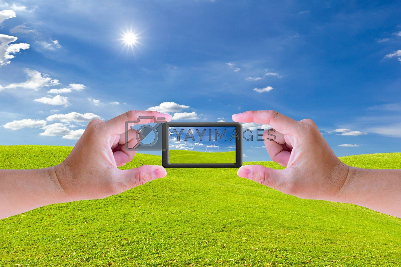 hand holding mobile phone and green grass meadow