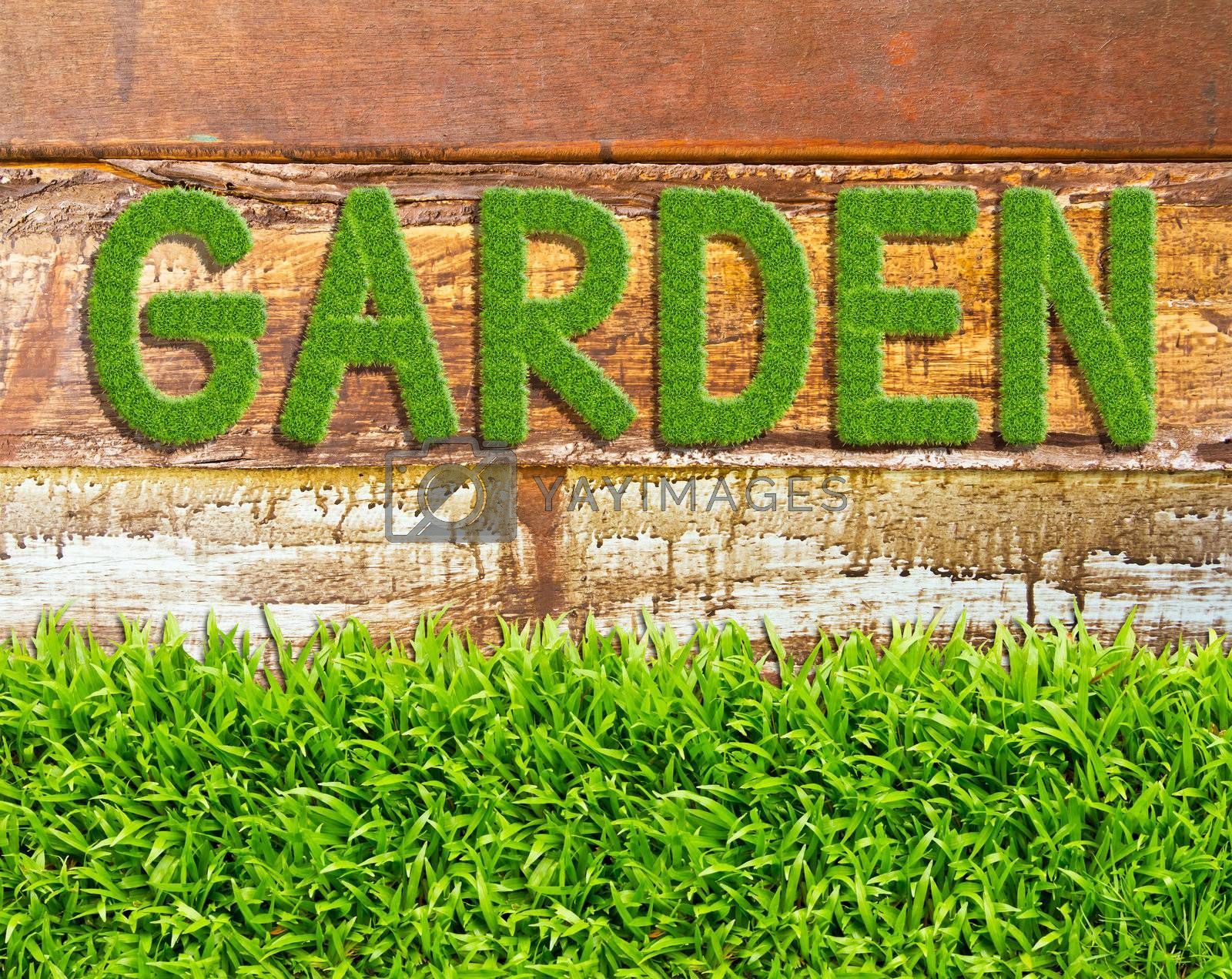 green grass garden word on wood background by tungphoto