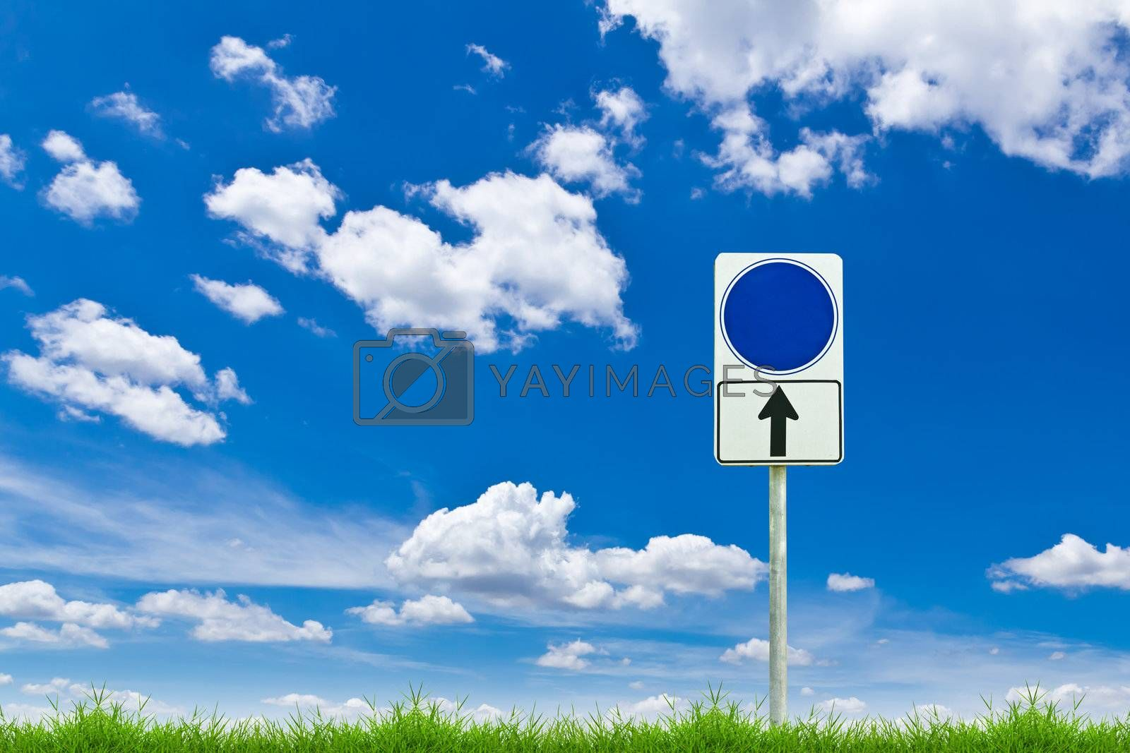 blue blank sign on fresh spring green grass against blue sky
