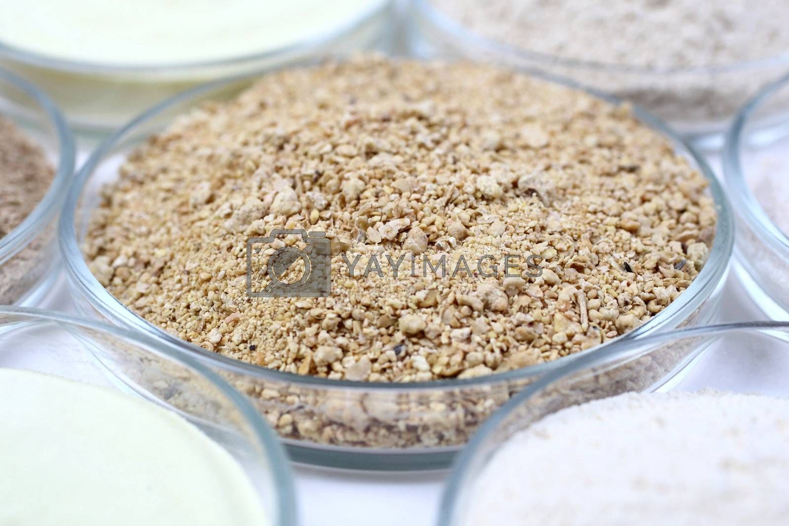 Various nutritious animal food in a glass bowls