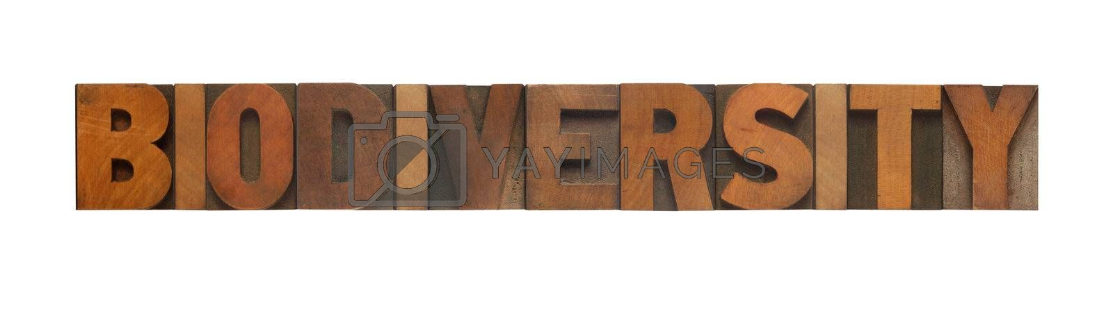 the word biodiversity in old wood type
