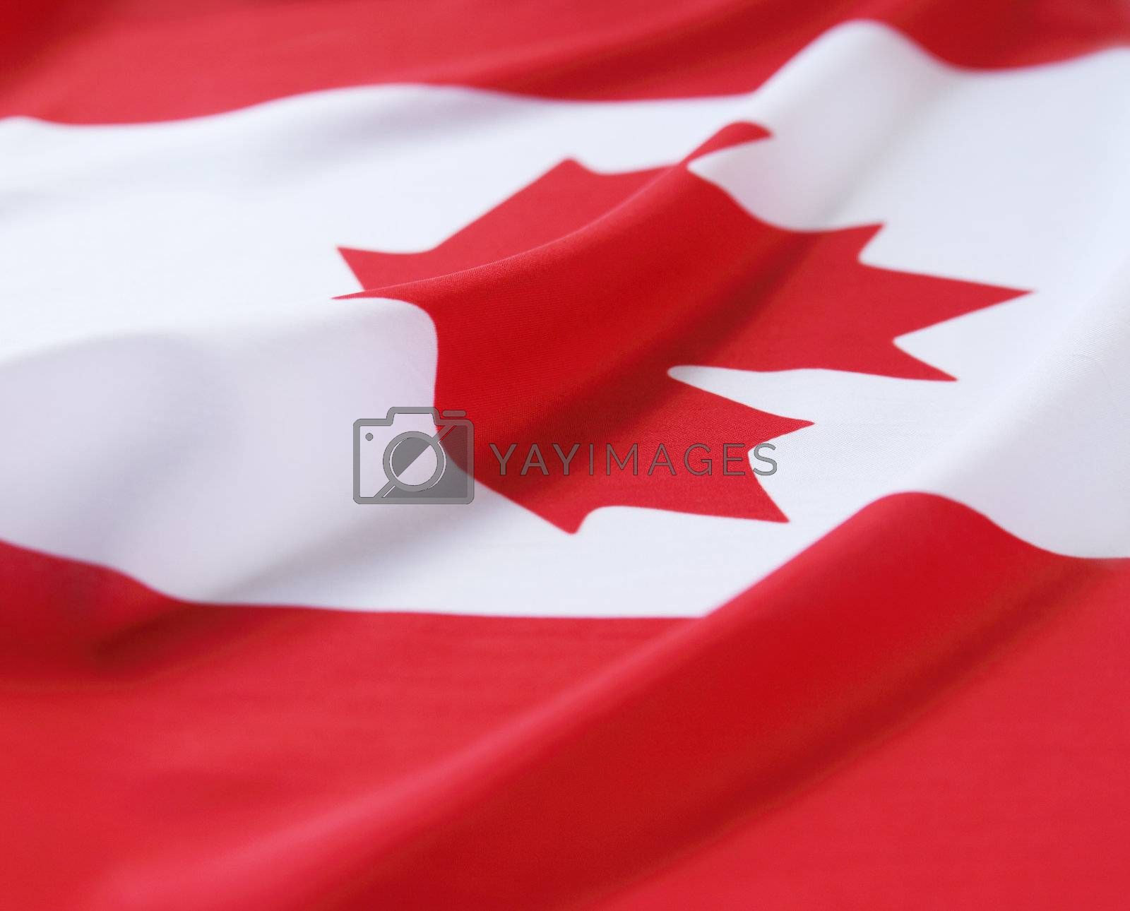 the flag of Canada with copy space