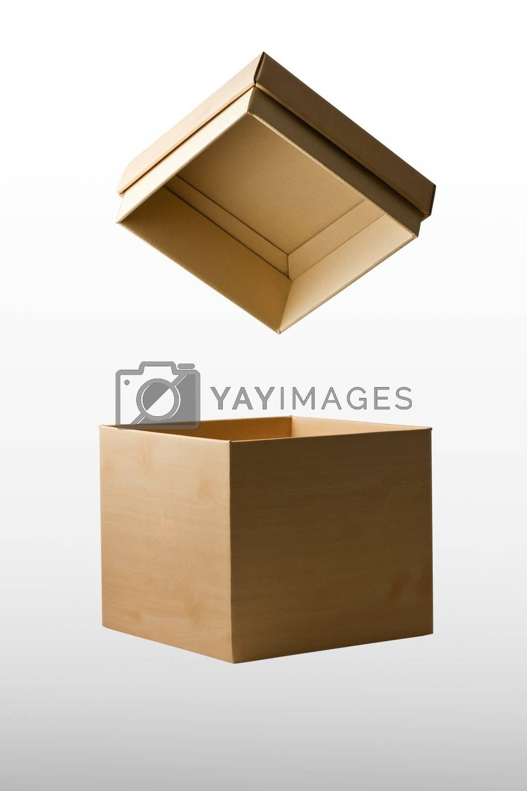 Open cardboard box carton container with reflection isolated on white background