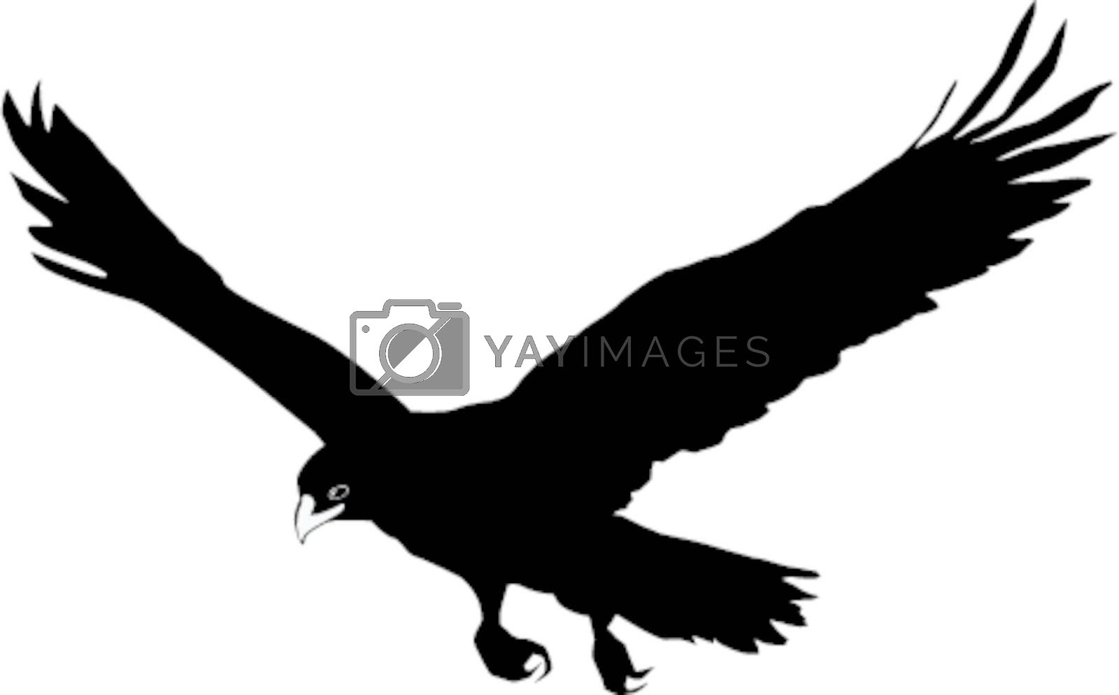 Illustration in style of black silhouette of golden eagle