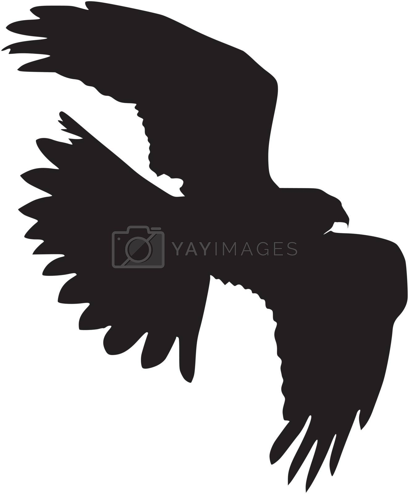 Illustration in style of black silhouette of harrier